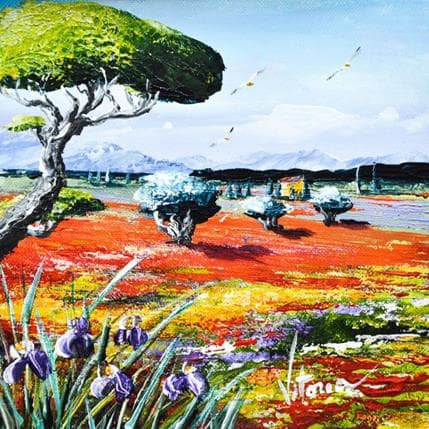 Vitoria La terre du soleil 13 x 13 cm