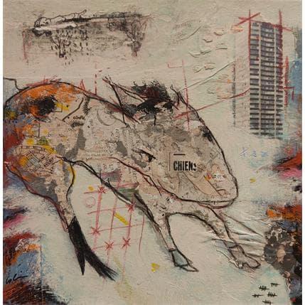 Sylvie Colin Chiens des rues 19 x 19 cm