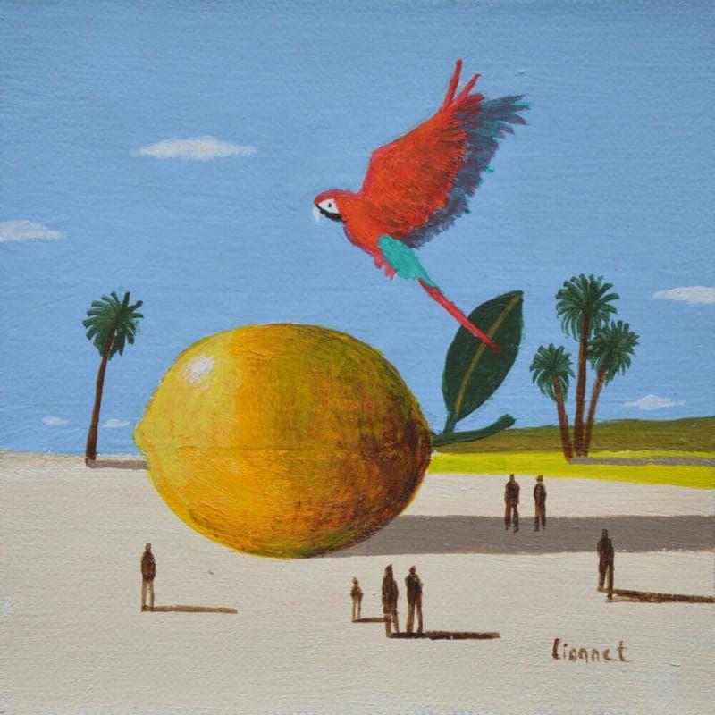 Citron et ara rouge