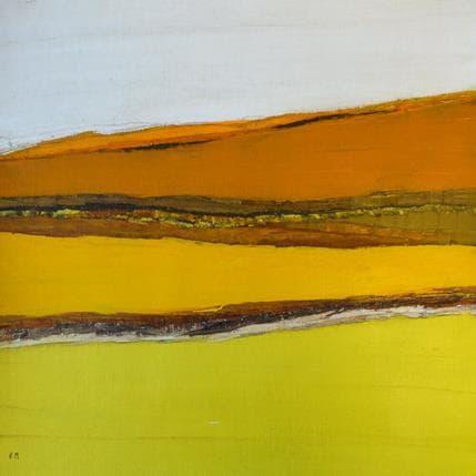 Frédérique Marteau Champs 36 x 36 cm