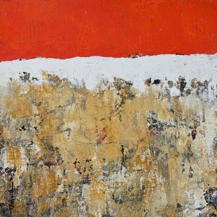 Laurence Moracchini V370 25 x 25 cm