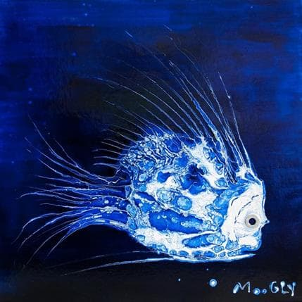 Moogly Esquivus 36 x 36 cm