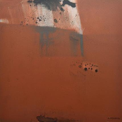 Daniel Reymann ARVI 36 x 36 cm
