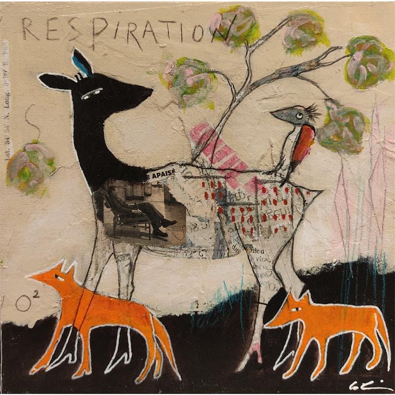 O2-Respiration