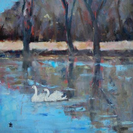 Jean David Swans 36 x 36 cm