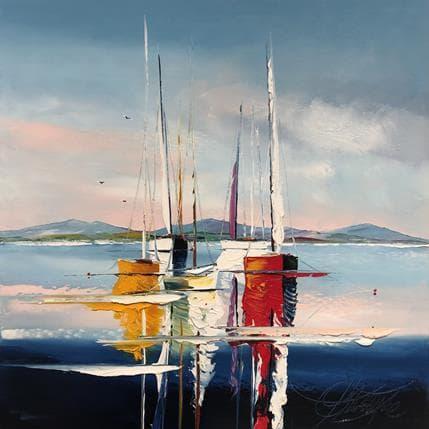 David Fonteyne Voile baissée 50 x 50 cm
