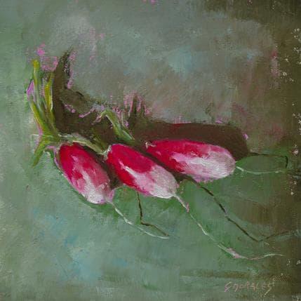Géraldine Morales 3 radis 19 x 19 cm