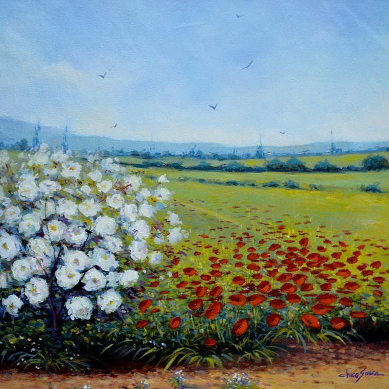 Campo em flor