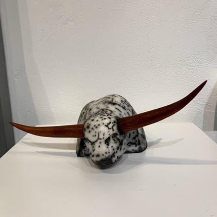 Clarisse Roche The Bull