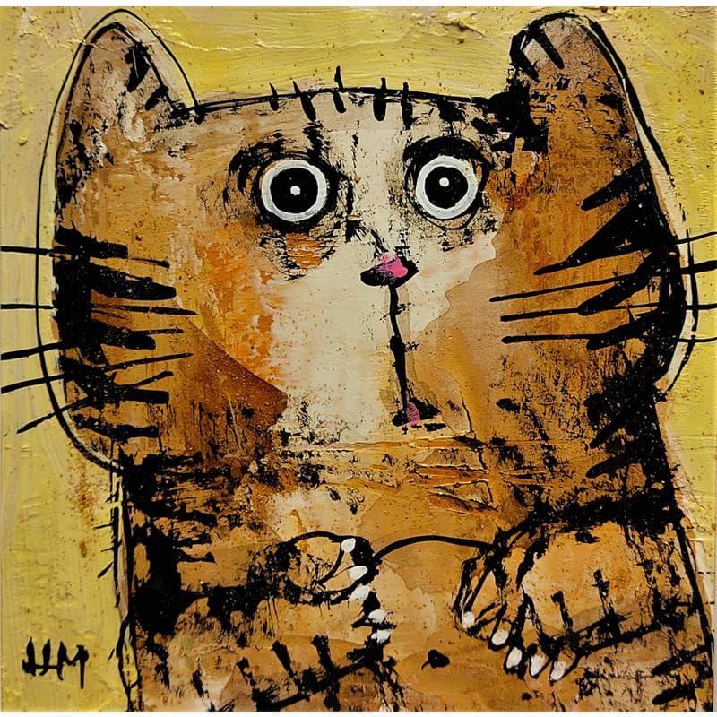 Chat tigré sur fond jaune