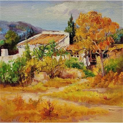 Cabello Ruiz Jose Sans titre 11 25 x 25 cm