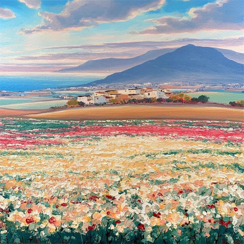 Warm field of spring II