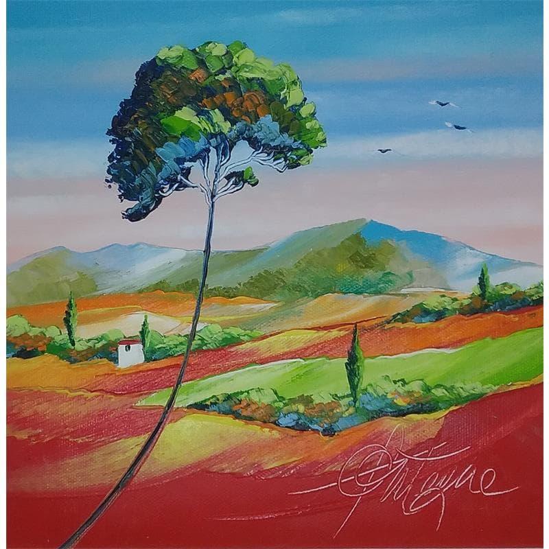 Nature Provence